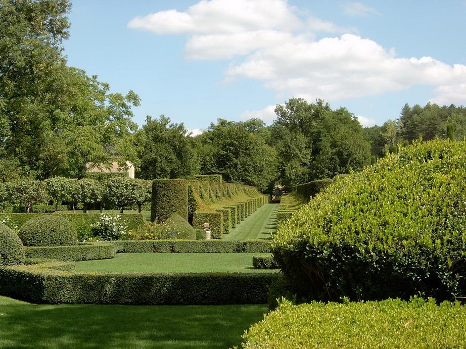 My plants - Les jardins du golfe porto vecchio ...